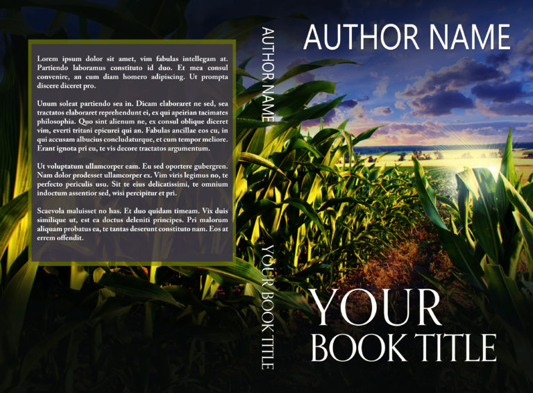 Cornfield with car headlights suspense mystery premade book cover