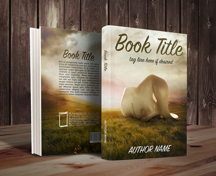 Abstract and surreal sadness concept romance or fiction premade book cover graphic